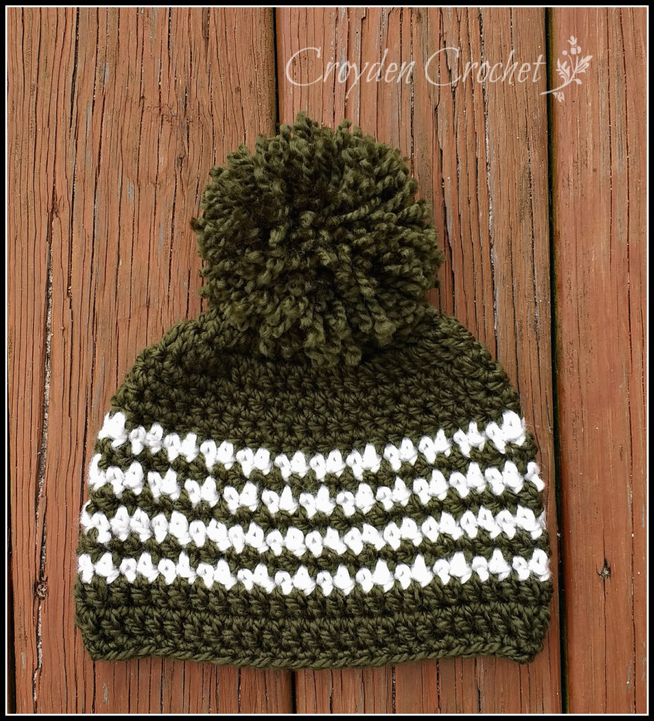 pine barrens crochet beanie
